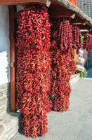 Pepper fron Tihany,Lake Balaton,Hungary