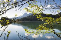 Lake Haldensee in spring, Austria