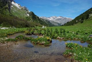 Alpenpanorama am Spullerbach