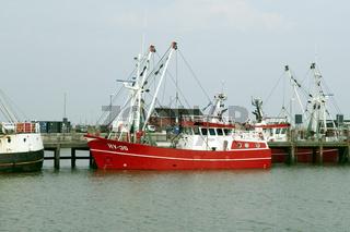 krabbenkutter, hafen, havneby,