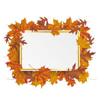 Golden Paper Board Autumn Foliage