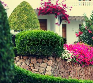 In garden