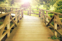 Wooden footbridge in a wood