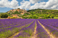 Little town on a hill with a lavender field.