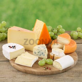 Käse wie Camembert, Bergkäse und Gouda auf Käseplatte