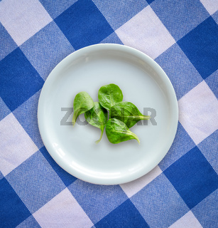 Diet Concept Of Salad Leaves On Empty Plate