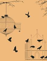 Birds and birdcages postcard 3