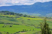 Toskana Huegel  - Tuscany hills 61