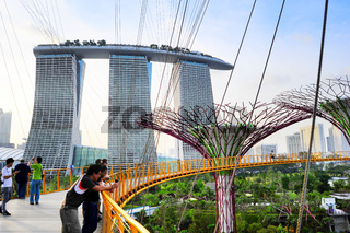 Gardens by the Bay in Sinapore