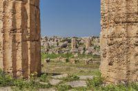 Selinunt, Sizilien, Italien | Selinunte, Sicily, Italy