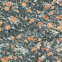 Seamless texture - surface of natural stone with red spots