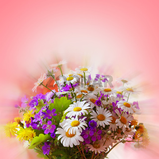 Colorful bouquet of field flowers .