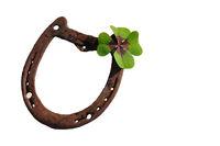 horseshoe, four-leaf clover