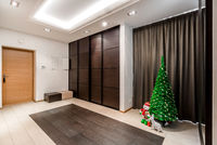 Interior of entrance hall with christmas tree