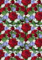 Background  from bouquet of red roses with asters