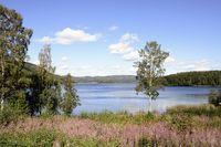 Hoga Kusten (Sweden)