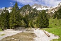 Landscape in Autria Tannheimer Tal valley