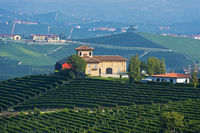 Winery near Barolo, Piedmont, Italy