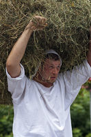 Man carrying a heap of hay