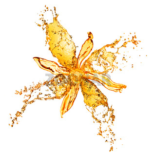 flower from water splashes isolated on white