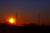 Poles of power lines at sunset - industrial landscape