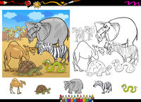 safari animals coloring page set