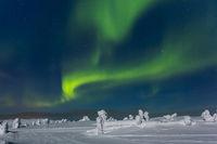 Meinten Sie: Polarlicht (Aurora borealis), Kittil