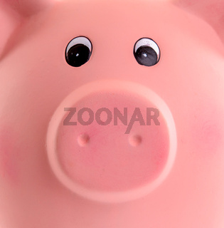 Unique pink ceramic piggy bank