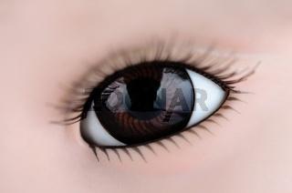 Big, brown eyes closeup