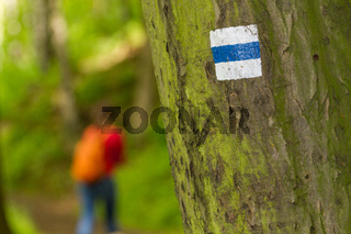 Trekking sign on a tree with hiker