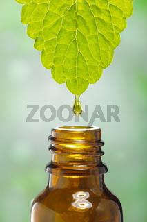 Alternative Naturmedizin