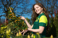 Female gardener or farmer with bush of berries