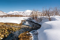 Hot spring in the Nalichevo National Park. Unesco World Heritage site. Kamchatka, Far East. Russia