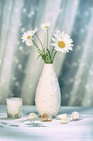 Summer daisies in vase on table