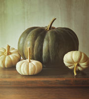 Green pumpkin and small white gourds on table