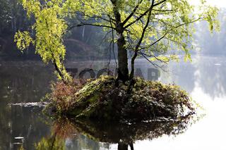 Naturschutzgebiet, Rehlingen, Saarland, Germany