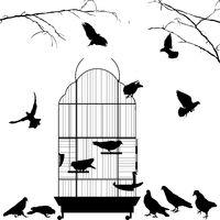 Open bird cage and birds