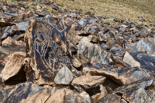 Rocks with ancient pictograms engraved on Saimaluu Tash site in Kyrgyzstan