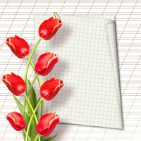 Bouquet of beautiful red tulips with greeting on paper white background