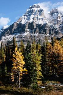 Mount Huber and Opabin Plateau, Yoho National Park, Canada
