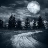 Magic landscape with empty rural road going to pine tree mysterious forest under dramatic cloudy sky at full moon night