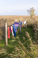 Clothes Line at the Bay of Ahrenshoop