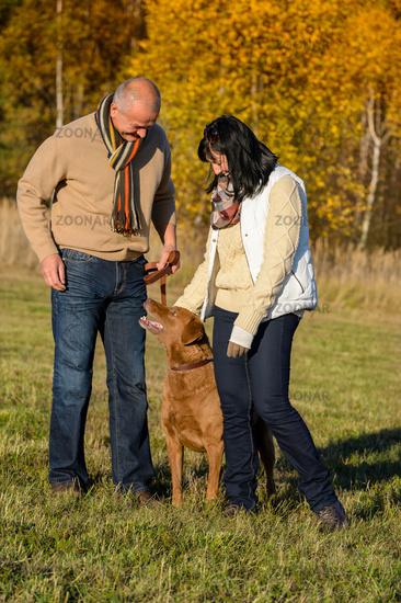 Couple training dog in sunny autumn park