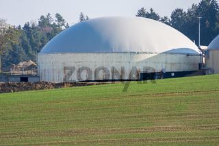 Green Bioenergy