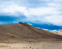 Himalaya high mountain landscape panorama with blue cloudy sky. India, Ladakh, near salt lake Tso Kar, altitude 4600 m