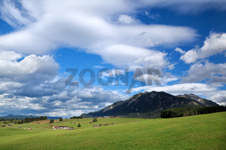 blue sky over alpine meadows