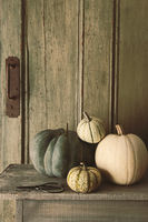 Pile of pumpkins and gourds on old bench