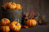 Miniature pumpkins on wooden table