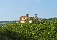 Castle Castello Falletti, Barolo, Piedmont, Italy