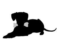 Hund mit Knochen - Dog with bone